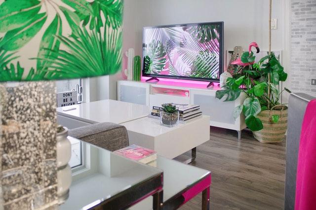 telewizor 55 cali do 1500 zł